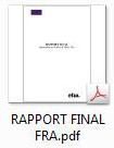 rapport final fra